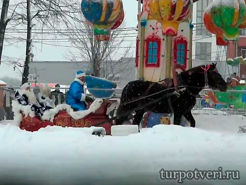 Дед Мороз и Снегурочка въехали в Горсад на санях.