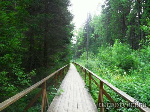 Деревянный мост к Оковецкому источнику