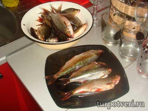 Рыбалка в Калязине