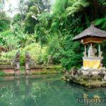 Индонезия Бали экскурсии