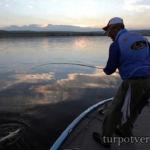 Ловля рыбы в отвес