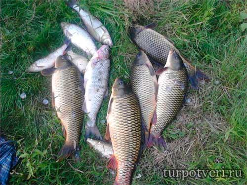 Любители рыбной ловли в Вышнем Волочке
