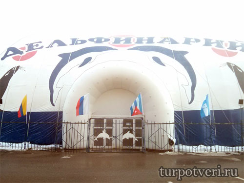 Вход в дельфинарий ТЦ Вавилон