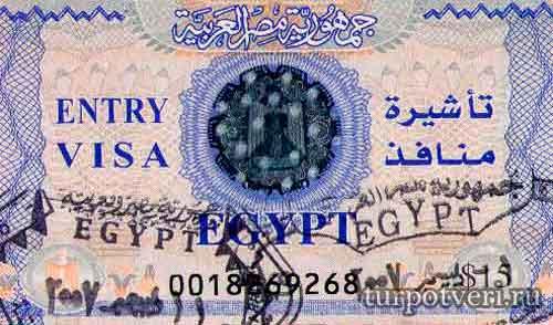 vizovyj_sbor_v_egipet