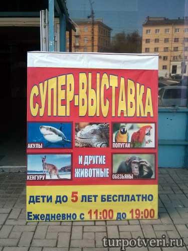 Выставка животных в Твери