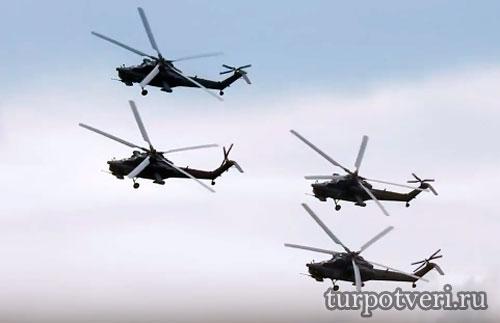 Праздник беркутов в Торжке