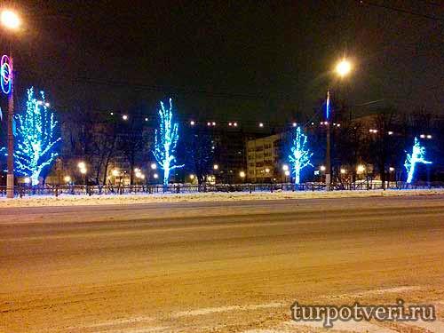 Новогодние деревья на пр. Калинина в Твери