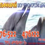 Дельфинарий в Твери