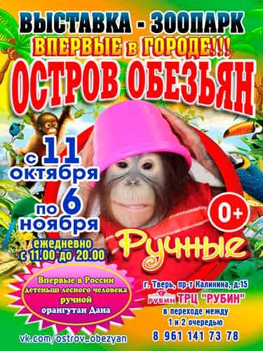 Выставка обезьян Тверь