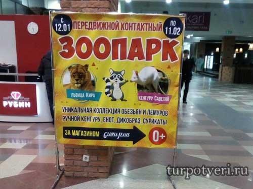"""Выставка-зоопарк """"Парад обезьян"""""""