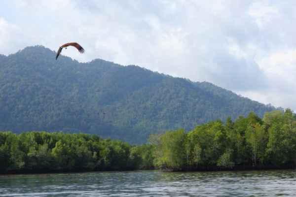 ostrov-Langkavi