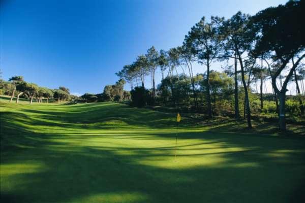 Поля для гольфа